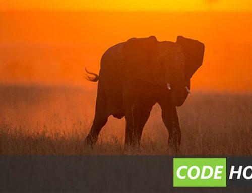 Qué es MongoDB y por qué debería usarlo?